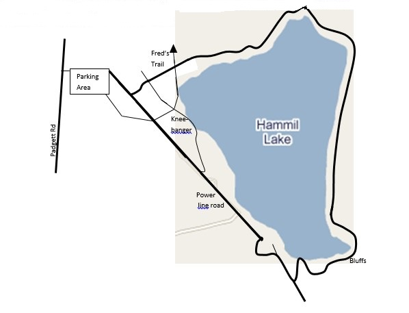 Hammil Lake Map