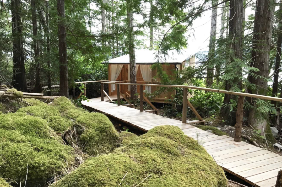 Cabanas in the Forest