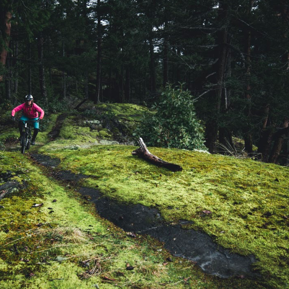 Single track trails for everyone to bike on the Sunshine Coast
