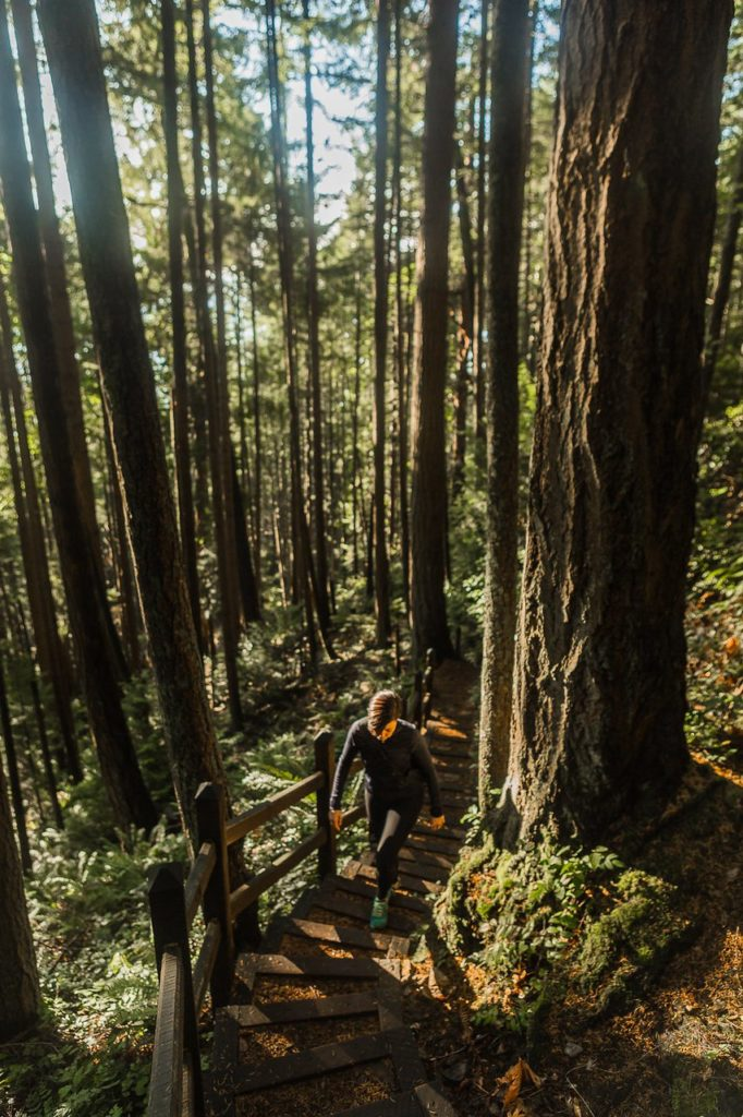 The hike up the stairs at Soames Hill in Gibsons. Photo: Chris Thorn Photography